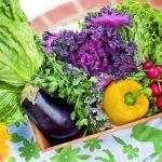 野菜が高い