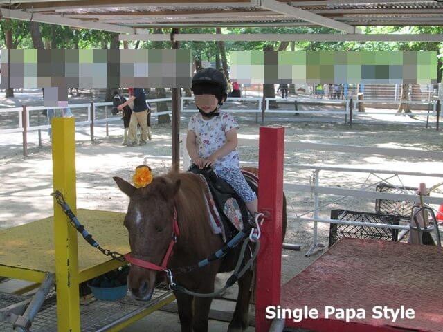 むさしの村のポニー乗馬
